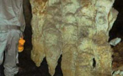 日本列島洞穴ガイド